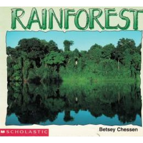 Rainforest245821.7