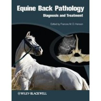 Equine Back Pathology  Diagnosis And Treatment727482.4