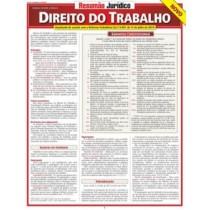 Resumao Juridico - Novo Direito Do Trabalho544608.2